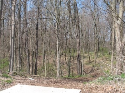Banklick Woods Park, Main course, Hole 5 Tee pad