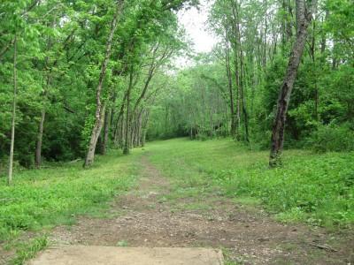 Veterans Park, Main course, Hole 15 Tee pad
