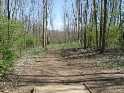 Veterans Park, Main course, Hole 13 Tee pad