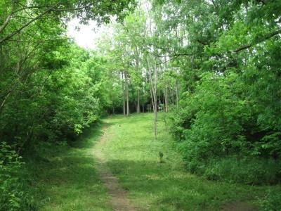 Veterans Park, Main course, Hole 9 Tee pad