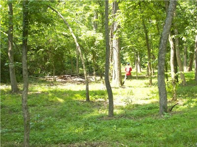 Paducah DGC @ Stuart Nelson Park, Main course, Hole 14 Long approach