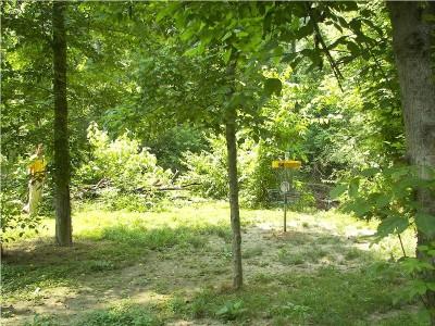 Paducah DGC @ Stuart Nelson Park, Main course, Hole 14 Putt