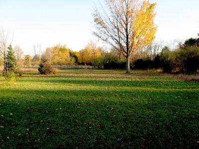 Hudson Mills Metropark, Original course, Hole 4 Long approach