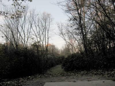 Hudson Mills Metropark, Original course, Hole 9 Long tee pad