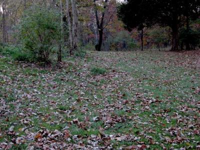 Hudson Mills Metropark, Original course, Hole 8 Midrange approach