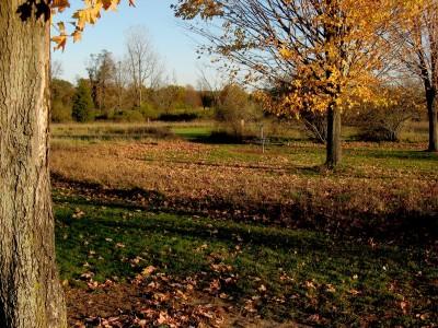 Hudson Mills Metropark, Original course, Hole B Midrange approach