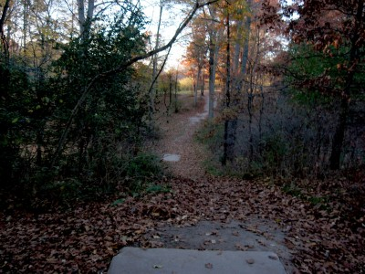 Hudson Mills Metropark, Original course, Hole 6 Long tee pad