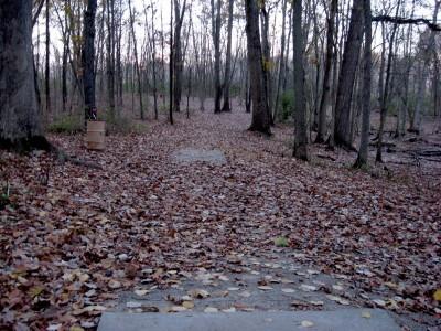 Hudson Mills Metropark, Original course, Hole 13 Long tee pad