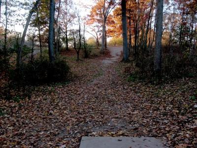 Hudson Mills Metropark, Original course, Hole 6 Short tee pad