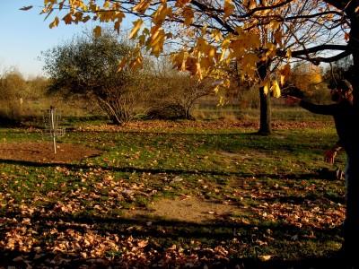 Hudson Mills Metropark, Original course, Hole B Putt