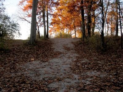 Hudson Mills Metropark, Original course, Hole 6 Midrange approach