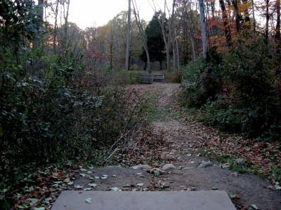 Hudson Mills Metropark, Original course, Hole 8 Short tee pad