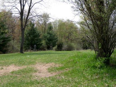 Hudson Mills Metropark, Monster course, Hole 8 Midrange approach
