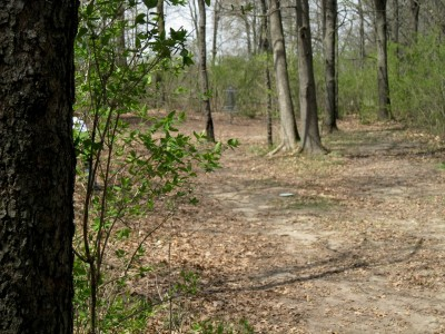 Hudson Mills Metropark, Monster course, Hole 6 Long approach