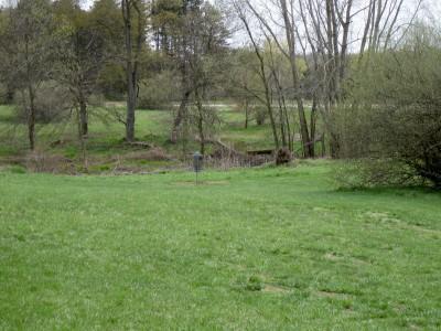 Hudson Mills Metropark, Monster course, Hole 16 Midrange approach