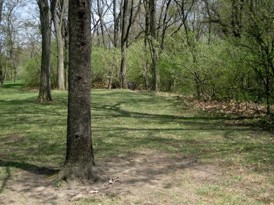 Hudson Mills Metropark, Monster course, Hole 2 Long approach