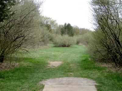 Hudson Mills Metropark, Monster course, Hole D Short tee pad
