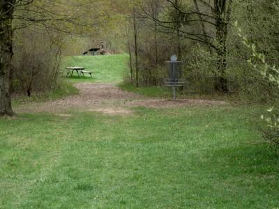Hudson Mills Metropark, Monster course, Hole F Putt