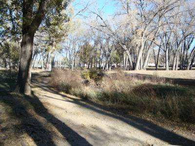 Widefield Park, Main course, Hole 14 Tee pad