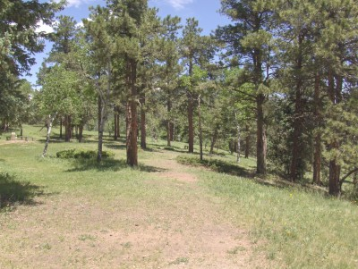 Beaver Ranch, Main course, Hole 15 Tee pad