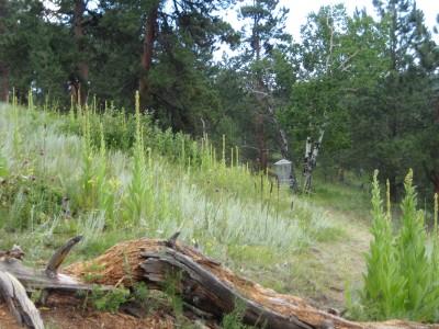 Beaver Ranch, Main course, Hole 18 Midrange approach