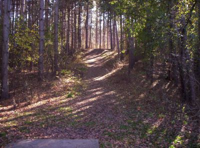 Kimball Pines, Main course, Hole 13 Tee pad