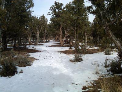 Colorado Mountain College, Glenwood, Main course, Hole 15 Tee pad