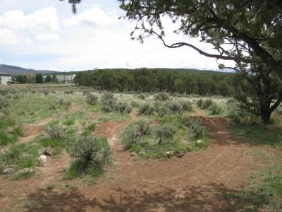 Colorado Mountain College, Glenwood, Main course, Hole 8 Tee pad