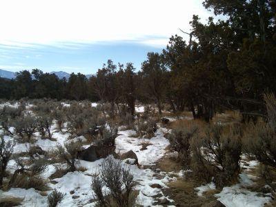 Colorado Mountain College, Glenwood, Main course, Hole 7 Tee pad