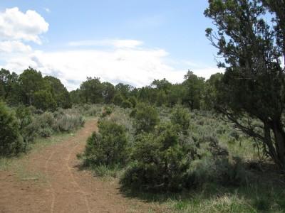 Colorado Mountain College, Glenwood, Main course, Hole 12 Tee pad