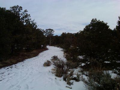 Colorado Mountain College, Glenwood, Main course, Hole 13 Tee pad