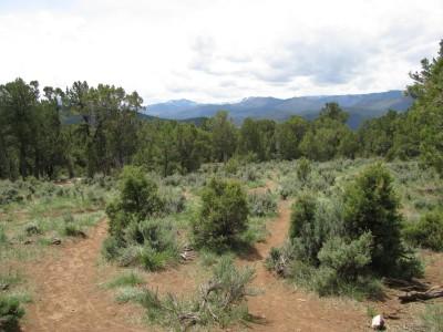Colorado Mountain College, Glenwood, Main course, Hole 16 Tee pad
