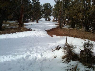 Colorado Mountain College, Glenwood, Main course, Hole 3 Tee pad
