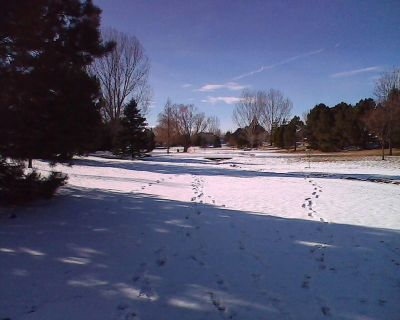 Epple Park, Main course, Hole 1 Tee pad