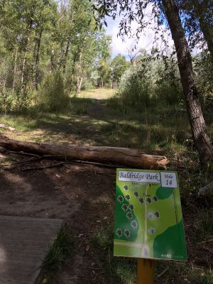 Baldridge Park, Main course, Hole 14 Tee pad
