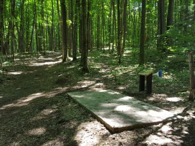 Avalanche Preserve Recreation Area, Main course, Hole 11 Tee pad