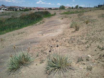 CSU Pueblo, Main course, Hole 12 Long approach