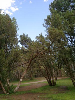 Pueblo City Park, Main course, Hole 11 Midrange approach