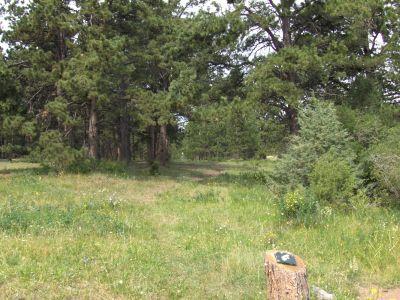 Sundance Trail Ranch, Main course, Hole 7 Tee pad