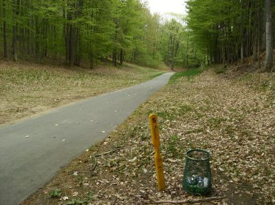 Boyne Mountain, Main course, Hole 5 Tee pad