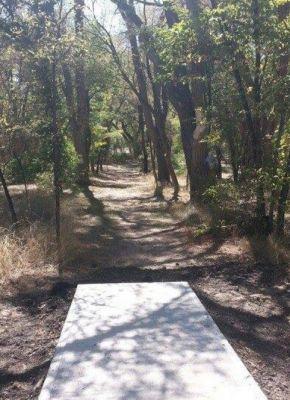 Pioneer Park DGC, Main course, Hole 12 Tee pad