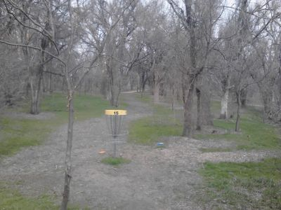 Pioneer Park DGC, Main course, Hole 15 Reverse (back up the fairway)