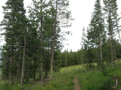 Adventure Ridge, Main course, Hole 6 Tee pad