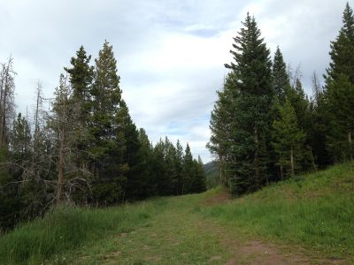 Adventure Ridge, Main course, Hole 14 Tee pad