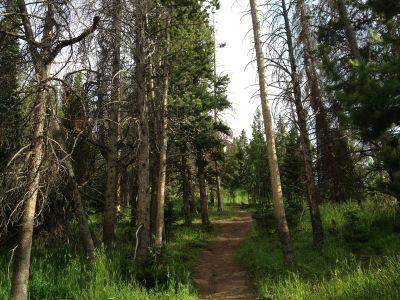 Adventure Ridge, Main course, Hole 17 Tee pad