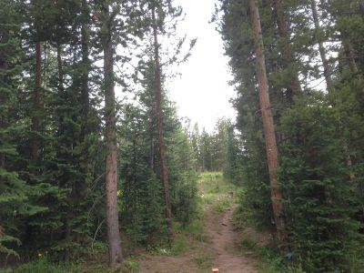 Adventure Ridge, Main course, Hole 7 Tee pad