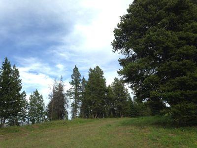 Adventure Ridge, Main course, Hole 11 Tee pad