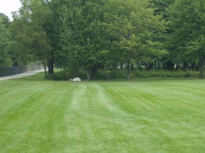 Lake Township Park, Main course, Hole 9 Tee pad