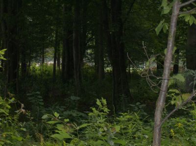 Lake Township Park, Main course, Hole 14 Long approach