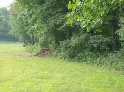Lake Township Park, Main course, Hole 13 Long approach